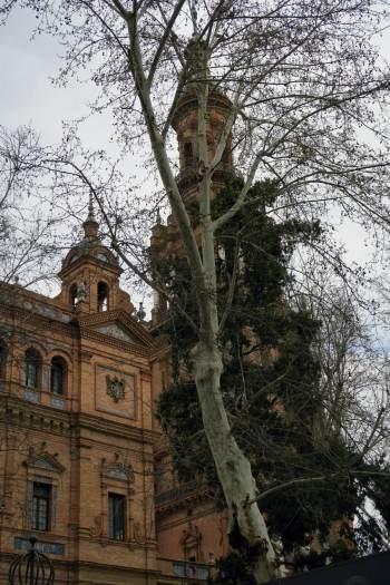 Sevilla3